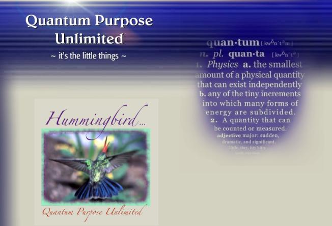 Quantum Purpose Unlimited